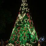 Fotos Chegada do Papai Noel em Mateus Leme - 07dez2017 (54)